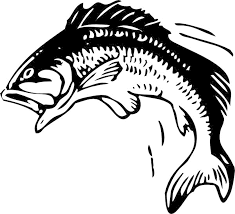 Small Picture Fish Coloring Pages Bass anfukco