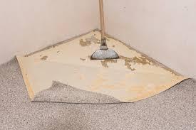 Teppichkleber mit seifenlauge von dielen entfernen. Teppichboden Entfernen Diese Kosten Entstehen