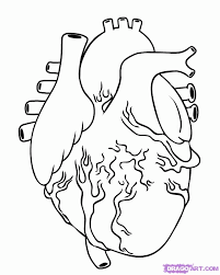 Small Picture Coloring Page Human Heart Coloring Pages Coloring Page and