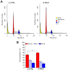 Down Regulation Of Raly Increases The Number Of Panc 1 Cells