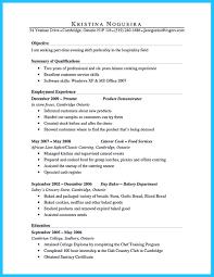 Food Demonstrator Resume Summary Examples Profesional Resume Template