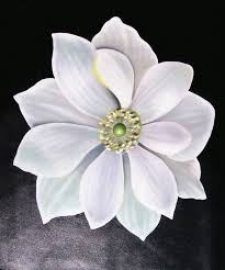 o keefe repro white flower modern art still life oil painting