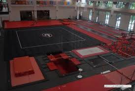 Stegeman Coliseum Gymnastics Seating Chart Suzanne Yoculan Gymnastics Center Official Athletics Site Of