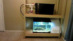 Self Cleaning Fish Tank Garden Indoor Aquaponics With 20 Gallon Tank Part 3 Youtube