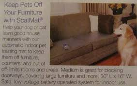 Keep Dog f Bed How To Keep My Dog f The Couch Modern Home