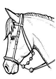 Kleurplaat Paarden Paarden Coloring Paard Tekeningen