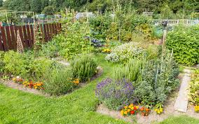 Small Picture How to design a potager vegetable and flower garden