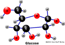 enzymes   how cells work   howstuffworksthe chemical structure of glucose