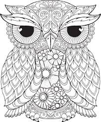 Owl Coloring Pages For Adults Pdf