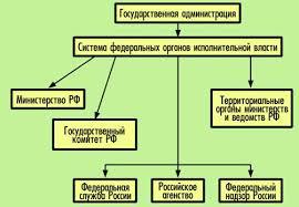 Государство и право Конституционно правовое регулирование  Иные федеральные органы исполнительной власти Государственная администрация
