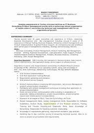 Executive Summary Resume Best Of Good Examples Resumes Awesome Best Adorable What To Put In Summary Of Resume