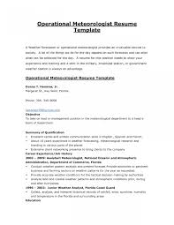 Sample Federal Government Resume Federal Job Resume Template Pixtasyco 20