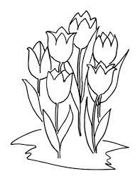 Zes Tulpen Kleurplaat Gratis Kleurplaten Printen