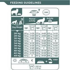 Buy Royal Canin German Shepherd Adult Dry Dog Food 3 Kg