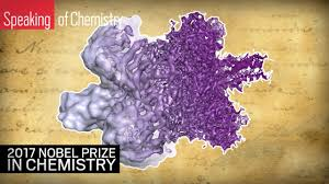 the nobel prize in chemistry cryo electron microscopy  the 2017 nobel prize in chemistry cryo electron microscopy explained
