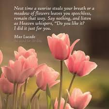 Spring Christian Quotes Best Of The Word For The Day Quotes Flowers Tulips Pink Flowers Spring