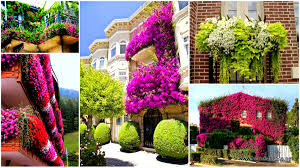 balcony gardens. Inspiration Pack Containing 23 Of The World`s Most Beautifully Flowered Balcony Gardens