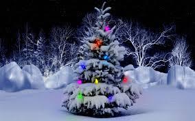 christmas tree wallpaper backgrounds desktop. Cold Christmas Tree Background Desktop Free Download In Wallpaper Backgrounds