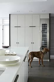 Image Corner Floor To Ceiling Kitchen Cabinets Decorpad Floor To Ceiling Kitchen Cabinets Contemporary Kitchen Croma