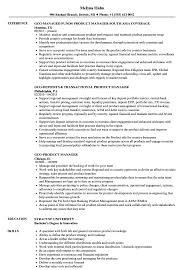 Gcg Product Manager Resume Samples Velvet Jobs
