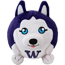 Image result for university of washington huskies