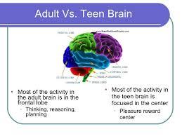 Teen brains vrs adult brains
