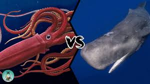 GIANT <b>SQUID VS</b> SPERM <b>WHALE</b> - Who would win this fight from ...