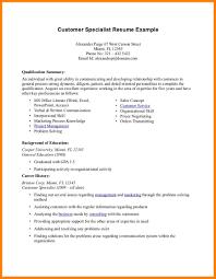 8 Example Of Resume Summary Precis Format