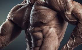 workout plans for men to build muscle health24