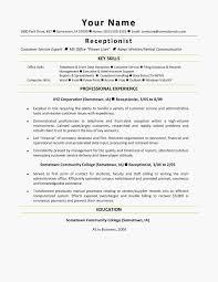 Sales Representative Skills Resume Awesome Unchain Resume Profile