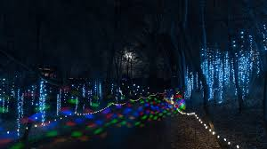 Baraboo Christmas Light Parade Everyone Should Take This Spectacular Holiday Trail Of