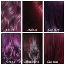 Shades Of Purple Hair Dye Chart 28 Albums Of Shades Of Purple Hair Color Chart Explore