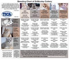 Kitten Color Chart