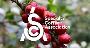 Certified Home Brewers — Specialty <b>Coffee</b> Association