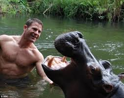 treehouse masters alex meyer. Steve Backshall, (above) Best Known For The BBC TV Programme Deadly 60, Treehouse Masters Alex Meyer R