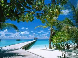 Image result for images of maldives island