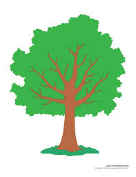 Funny apple tree coloring page. Tree Templates Tree Printables