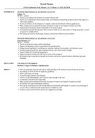 Senior Professional Business Analyst Resume Samples Velvet Jobs
