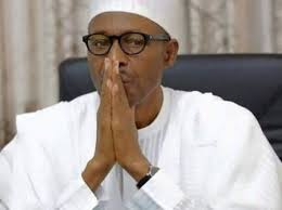 Image result for buhari news