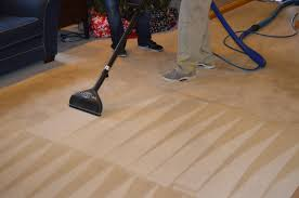 Image result for carpet cleaning evolution wand