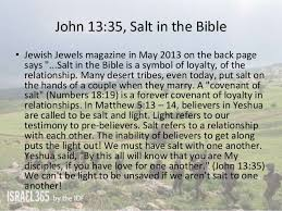 Image result for pictures of biblical salt