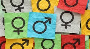 gender essay myths