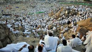 Image result for Nigerians in hajj climbing arafat