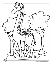 Small Picture Giraffe Coloring Pages Animal Coloring Pages Animal Jr