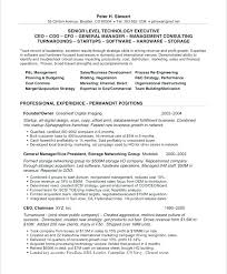 Best Executive Resume Format Delectable Best Executive Resume Format Executive Resume Format Best Executive