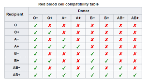 Rational Blood Type Chart Donor And Recipient Blood Type And