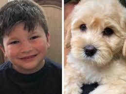 Fundraiser by Donald Junior : Service Dog for Bubby