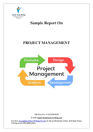 sample on project management by instant essay writing