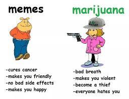Le new meme: meme facts! : 4ChanMeta via Relatably.com