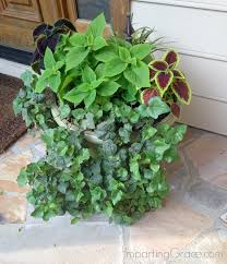 there s just one problem with shade how do you get plants to grow there of all places a front porch must have some greenery